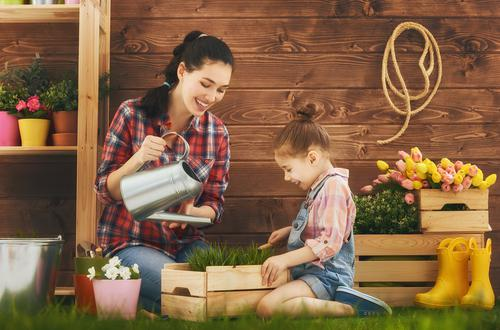 6 Eco-Friendly Ways to Reduce Water Waste in Your Garden